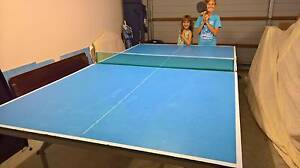 Professional Table tennis Table 16mm Oxenford Gold Coast North Preview