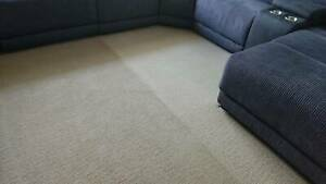 AUSSIE GOPHER CARPET CLEANING AND PEST MANAGEMENT
