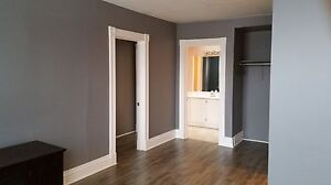 Historical Apartment for Rent in Downtown Galt Cambridge Kitchener Area image 4