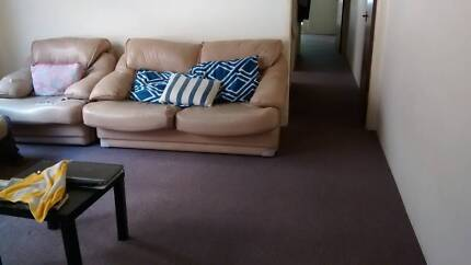 Room available for rent  in Westmead - 2 min walk from train station