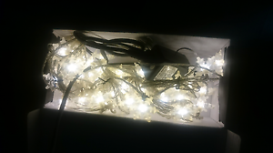Decorative lights FREE Lidcombe Auburn Area Preview