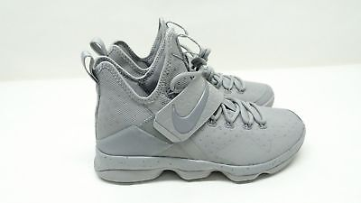 Nike Lebron James 14 XIV 852405 007 Silver/Reflect Silver Men's Sz 11 LBJ $175