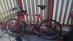 Traile Bike - URGENT (Must go soon) Hurstville Hurstville Area Preview