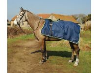 Horse Exercise Ride on Rugs