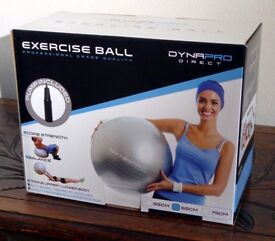 Gym Quality Exercise Ball