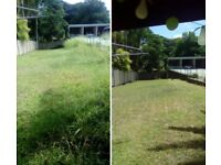 Grass cutting - Lawn mowing - Gardening services - Tidy up -Pressure washing ST Albans