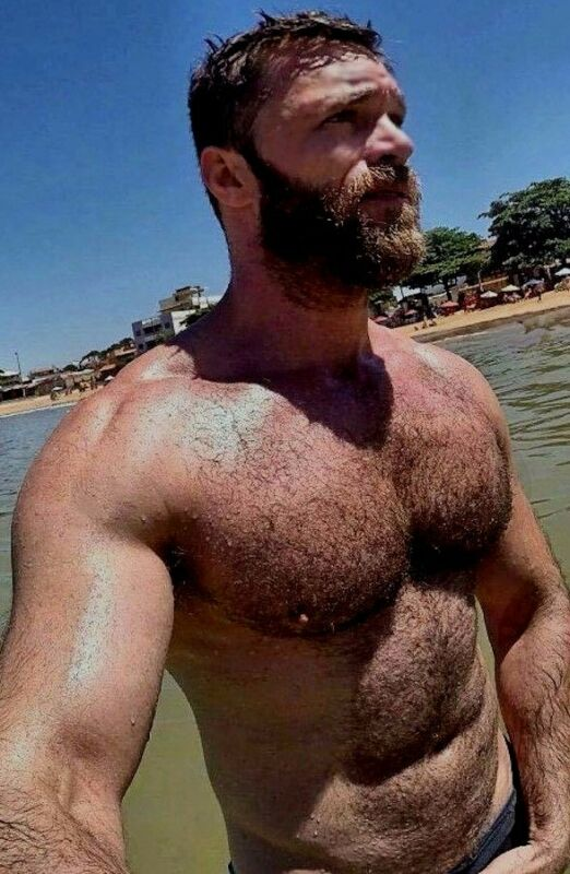 Shirtless Male Muscular Beefcake Hairy Chest Reading Hunk Stud PHOTO 4X6 F768