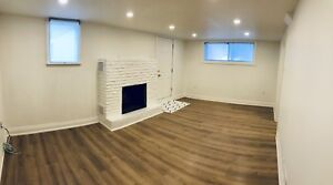 1 Bedroom - Newly renovated basement apartment