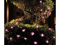 Petunia String Light set of 2 - BUY 2 FOR THE PRICE OF 1
