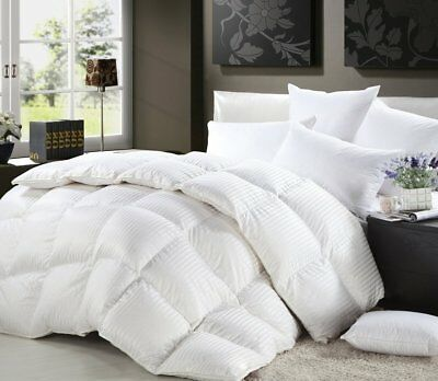 Egyptian Cotton Stripes Comforter - Experience True Luxury WithThis 1200TC 100% Egyptian Cotton Goose Down Comforter