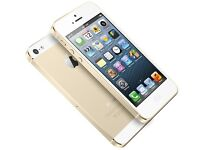 IPHONE 5S - GOLD - 16GB - EE - FROM SHOP - IMMACULATE CONDITION - £135