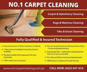 Professional Carpet Steam Cleaning Services All perth Perth Perth City Area Preview