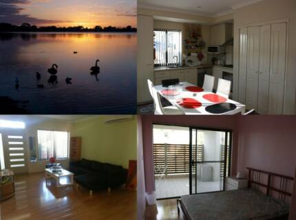 Room for rent, housemates, sharehouse, cheap accomodation Glendalough Stirling Area Preview