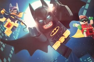 LEGO BATMAN ROBIN SUPERHEROES 7x5