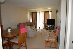 Furnished One Bedroom in 2bedroom apartment