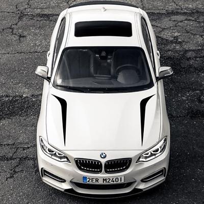 2x Autoaufkleber Car Tuning Dekor Design 60cm Farbe nach Wunsch