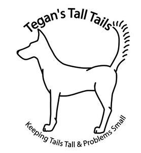 Dog Training & In Home Pet Care Wollongong Wollongong Area Preview