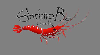 ShrimpBo