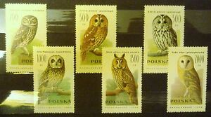 POLAND-STAMPS MNH Fi3146-51 SC2995-00 Mi3294-99 - Owls, 1990, clean - <span itemprop=availableAtOrFrom>Reda, Polska</span> - POLAND-STAMPS MNH Fi3146-51 SC2995-00 Mi3294-99 - Owls, 1990, clean - Reda, Polska
