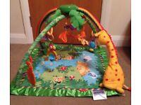 Excellent condition Rainforest Jungle Baby Gym