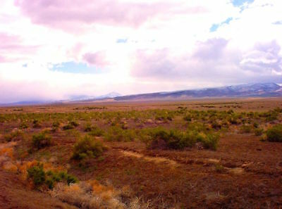 "RARE 40 ACRE NEVADA RANCH ""BUFFALO VALLEY""  5 STAR VIEWS!  CASH SALE~NO RESERVE!"