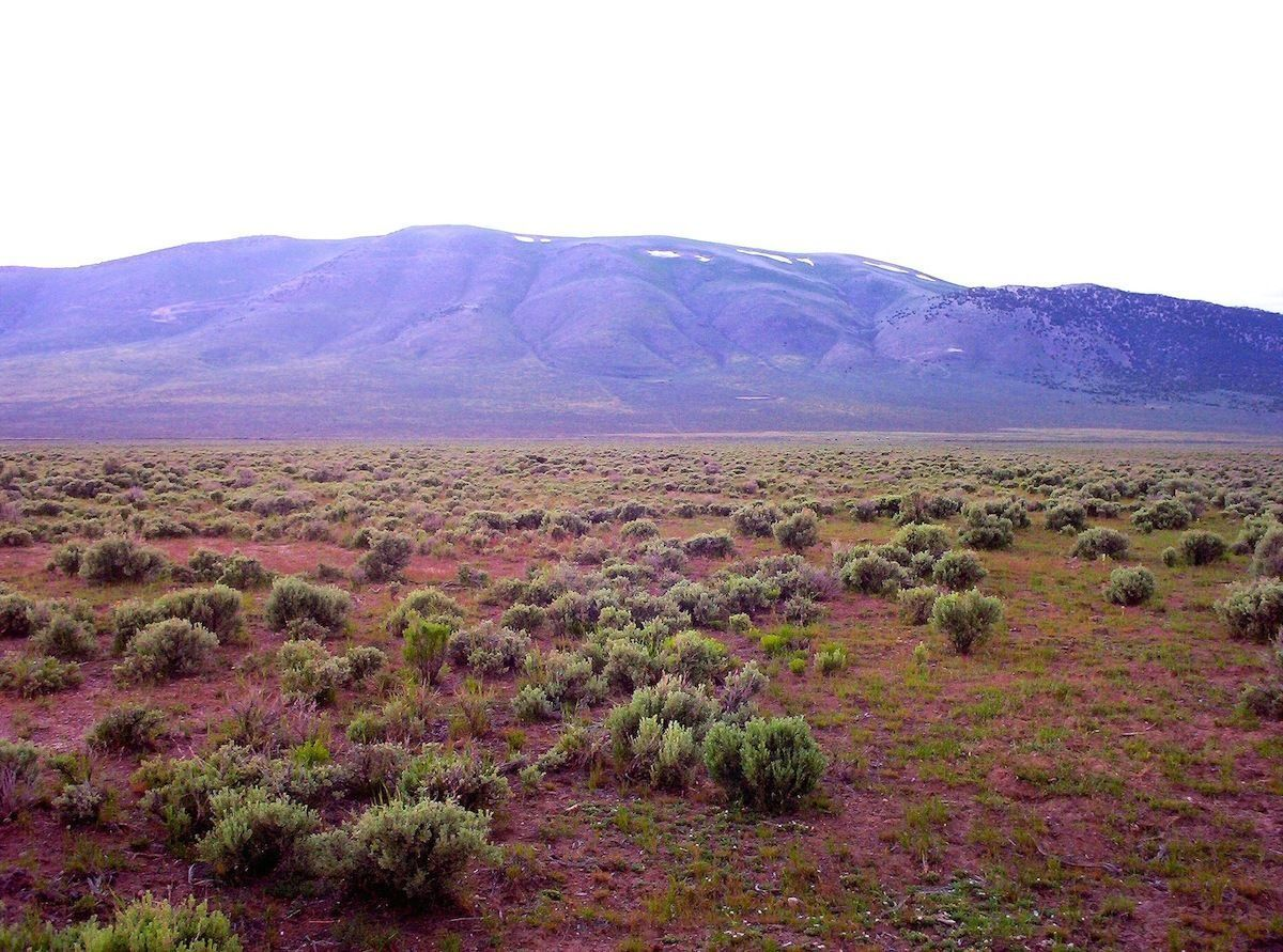 RARE 40 ACRE NEVADA RANCH!  INCREDIBLE SETTING & VIEWS!  CASH SALE!  NO RESERVE!