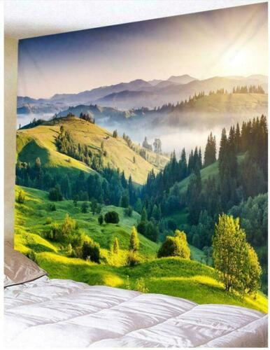 Scenery Tapestry Psychedlic Hippie Wall Hanging Blanket Art Home Bedspread Decor