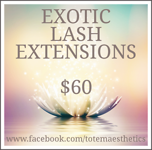 EXOTIC EYELASH EXTENSIONS  $60 Endeavour Hills Casey Area Preview