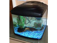 Fish Tank 48 Litres (Interpet Fish Pod 48)