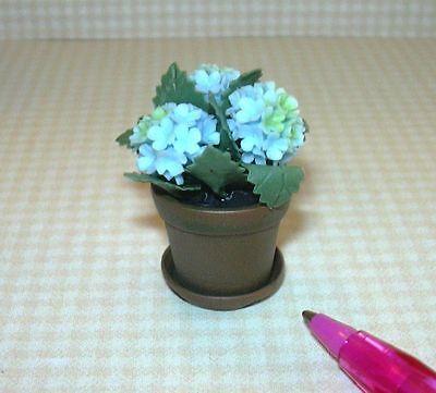 Miniature BLUE Hydrangea in Aged Resin Terracotta Pot: DOLLHOUSE 1/12 Scale
