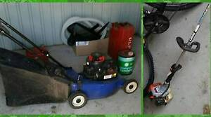 Lawn Mower Catcher/Mulcher & Petrol Whipper Snipper Kelso Townsville Surrounds Preview