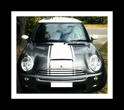 "Mini Cooper 20"" Bonnet & Boot Center Rally stripes Stripe Graphics Fit All Model"