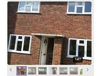 2 bed semi detached council house
