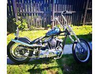 Harley davidson xlh1000 Ironhead Chopper