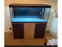 Fluval Roma 240 Beech tropical marine cold water fish tank aquarium (Drivery installation )