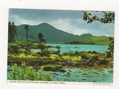 Kenmare River & Caha Mountains Lauragh Co Kerry Ireland 1989 Postcard 882a
