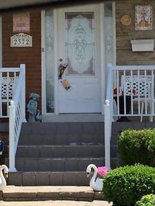 ✹✹✹ Flyer Delivery service, Door to Door Flyer Distribution