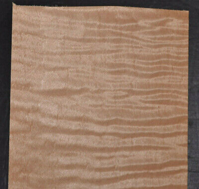 Curly Maple Raw Wood Veneer Sheets 4.5 X 23 Inches 142nd 7717-35