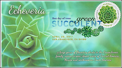 17 111  2017  Green Succulent  Global Forever  Fdc  Dcp