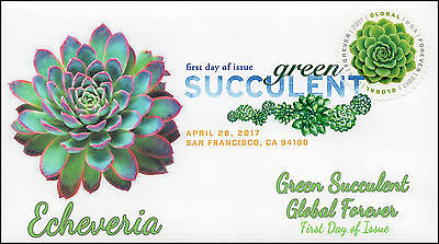 17 110  2017  Green Succulent  Global Forever  Fdc  Dcp