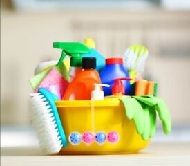 Domestic cleaner £15 p/h