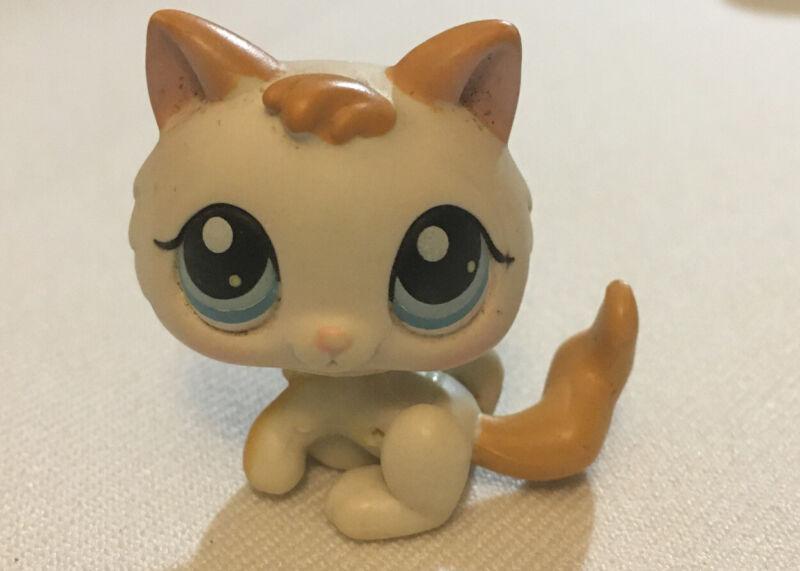 Littlest Pet Shop LPS Kitten Baby Kitty Cat White Orange Blue Eyes #134