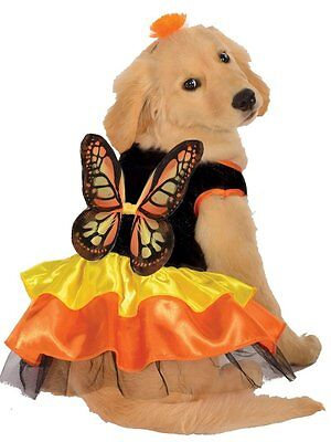 New Size Small Butterfly Orange Black Costume Dog Dress Clothing Rubies Pet Shop