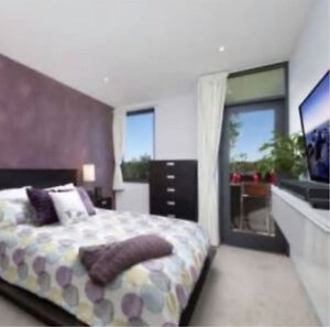 Unfurnished Beautiful double size bedroom to rent Lane Cove Lane Cove Area Preview