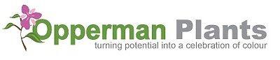 Opperman Plants Ltd