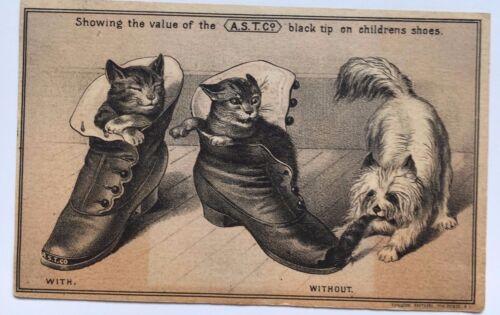 "Vintage Trade Card A.S.T. Co. Kittens dog ""Black tip"" Salisbury Mills, Mass."
