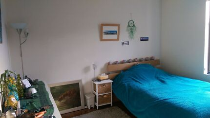 Bright cheap double room for short term lease Ashfield Ashfield Area Preview