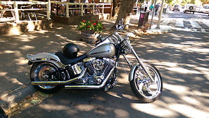Harley Davidson Softail Adelaide CBD Adelaide City Preview