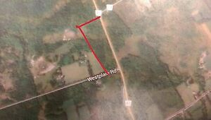 13.68 ACRES ON HWY 41, GREATER NAPANNEE