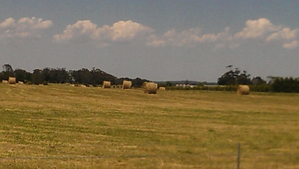 Hay round bales aprox 40 available